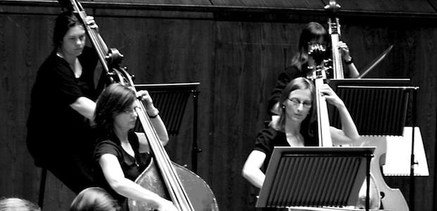 The double basses, March 2010