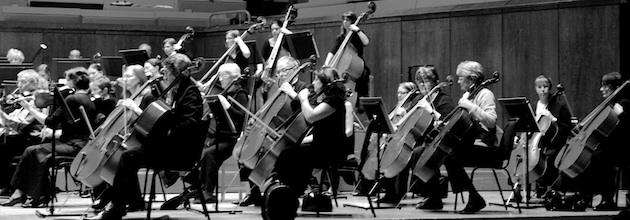 Cellos and double basses, March 2010